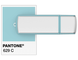 Pantone referencia Pendrive